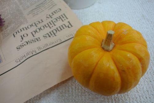 かぼちゃ102801 .jpg