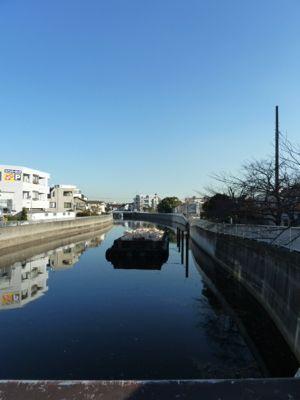 呑川03.jpg