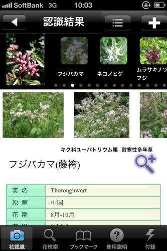 花しらべのアプリ.jpg