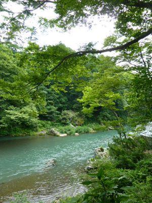 川の色1.jpg