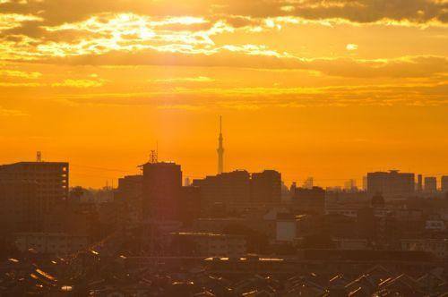 朝の景色.jpg