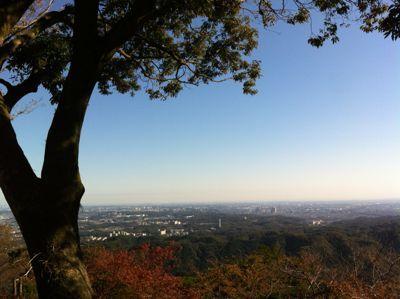 東京1116.jpg