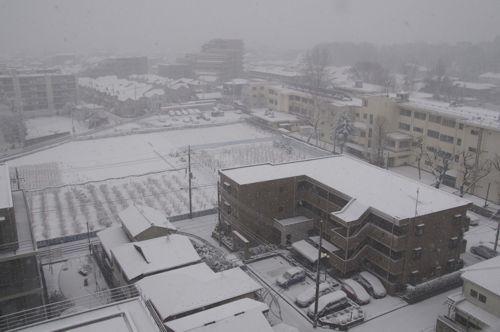 雪の朝0229.jpg