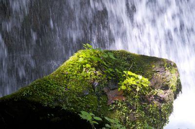 青森ツナガル - 469岩.jpg